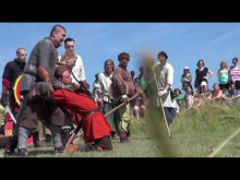 Viking Fighting 2012