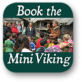 Book Mini Viking